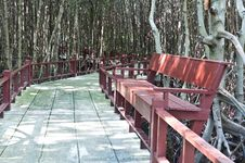 Free Wooden Benches Royalty Free Stock Photography - 20893127