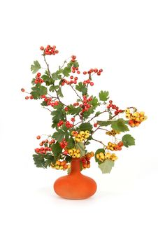Free Autumn Bouquet Stock Photos - 20895523