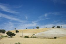 Free Andalusia Landscape Stock Image - 20896331