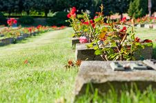 Free Cemetery Royalty Free Stock Image - 20899186