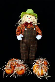 Free Cute Little Thanksgiving Scarecrow Stock Images - 20899284