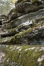 Free Moss Covered Wall Stock Photo - 2090150
