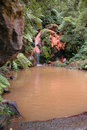 Free Exotic Natural Pool In The Azores Royalty Free Stock Photo - 2091835