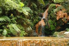 Free Exotic Natural Pool In The Azores Royalty Free Stock Image - 2091796