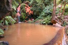 Free Exotic Natural Pool In The Azores Royalty Free Stock Image - 2091826
