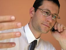 Free Young Businessman On Phone Royalty Free Stock Photography - 2091837
