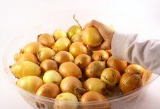 Hand Holding Onions Stock Photo