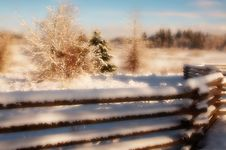 Free Fencing In Winter (satin) Royalty Free Stock Photography - 2095907