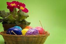 Free Easter Eggs Wtih Primrose Royalty Free Stock Photography - 2098287