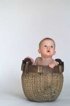 Free Basket Baby Stock Photography - 2099052
