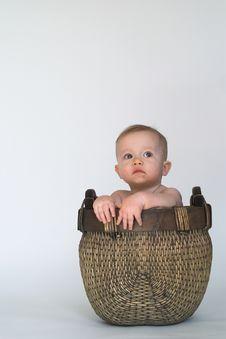 Free Basket Baby Stock Image - 2099071