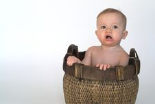 Free Basket Baby Royalty Free Stock Photo - 2099075