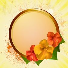 Free Hibiscus Flowers And Plaque Stock Photo - 20900210