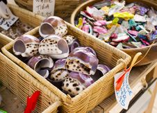 Free Large Purple Seashell Stock Photography - 20901272