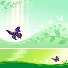 Free Abstract Butterfly Modern Vector Background Royalty Free Stock Photos - 20901518
