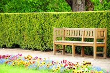 Wooden Bench In The Garden Stock Image
