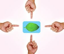 Free Hand Pointing On Green Leaf Button Royalty Free Stock Photos - 20902278
