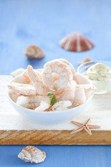 Free Frozen Shrimps Royalty Free Stock Images - 20902319