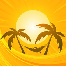 Free Tropical Background Stock Images - 20902504