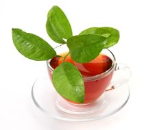 Free Tea And Green Leaf Royalty Free Stock Photography - 20904797