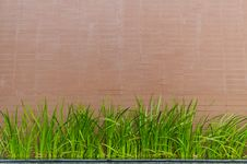 Free Stone Wall Background With Grass Stock Image - 20906371