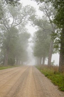 Gravel Road With Tree And Mist Royalty Free Stock Images