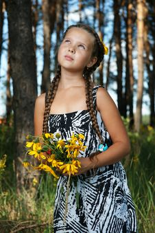Free The Girl In Wood Royalty Free Stock Image - 20907116