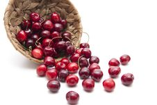 Free Red Cherries With Stem Royalty Free Stock Images - 20907339