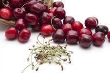Free Red Cherries With Stem Stock Photos - 20907353