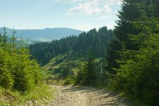 Free Country Road Stock Photos - 20908833