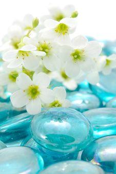 Free White Flowers On Blue Glass Stones Royalty Free Stock Photo - 20909575