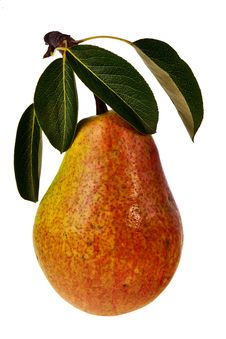 Ripe Pear. Stock Photography