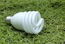 Free Light Bulb On The Grass Royalty Free Stock Image - 20911276