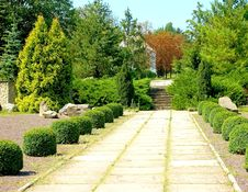 Free Footpath In Park Royalty Free Stock Photography - 20911547