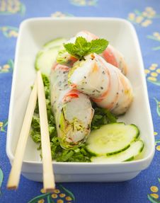 Free Spring Roll Food Royalty Free Stock Photos - 20913318