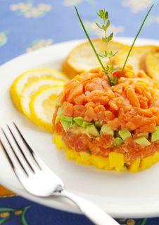 Fresh Salmon Tartar Royalty Free Stock Images