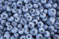 Free Blueberry Royalty Free Stock Photos - 20915108