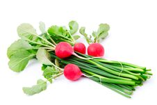 Fresh Radish With Green Onion