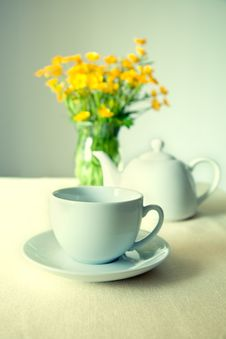 Free Cup Of Tea Stock Image - 20915191
