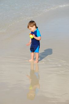 Free Toddler In Water By The Beach Stock Photography - 20916492