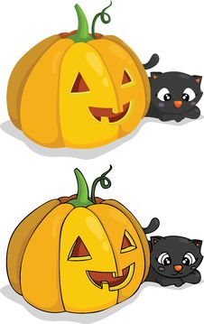 Free Pumpkin And Cat Royalty Free Stock Photo - 20918555