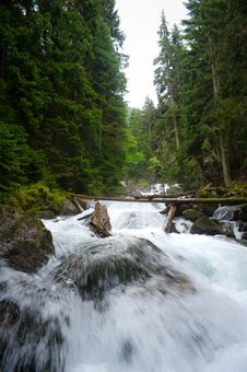 Free Falls In Wood, The Mountain River Stock Images - 20919654