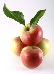 Free Organic Apples With Leaves Royalty Free Stock Images - 20919689