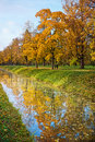 Free Golden Autumn Trees With Reflection In Water Stock Image - 20921321