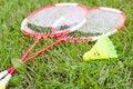 Free Badminton Stock Photos - 20923613