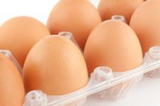 Free Eggs Stock Images - 20920134
