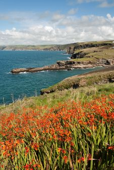 Free Landscape In Cornwall Stock Photo - 20920180