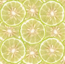 Free Lime Slices Background Royalty Free Stock Photos - 20921218