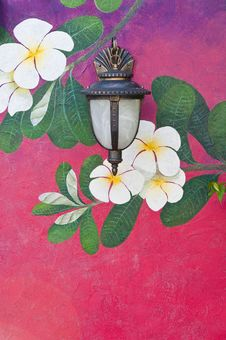 Free Old Lantern Hang On Beautiful Wall Of Flower Stock Image - 20921231