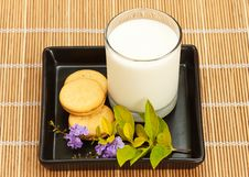 Free Cookie And Milk Stock Photography - 20921522